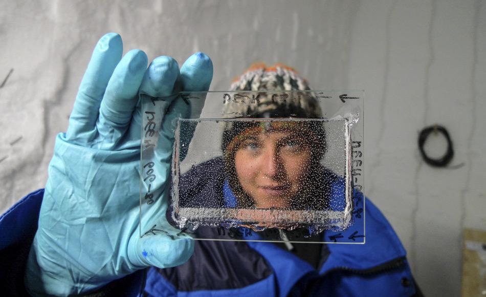 Das Eis wird mit zunehmender Bohrtiefe immer transparenter. Bis in 1.000 m Tiefe erscheint das Eis als Folge der Luftblasen milchig grau. Unterhalb von 1.200 bis 1.300 m Tiefe ist das Eis transparent wie Plexiglas. (Foto: Sepp Kipfstuhl, AWI)
